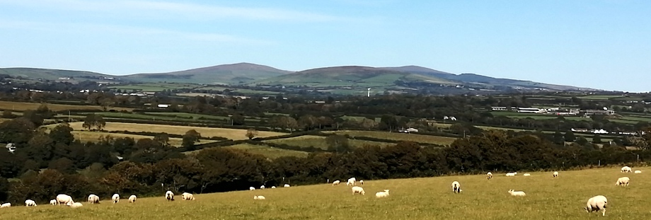 Our views of the Preseli Hills